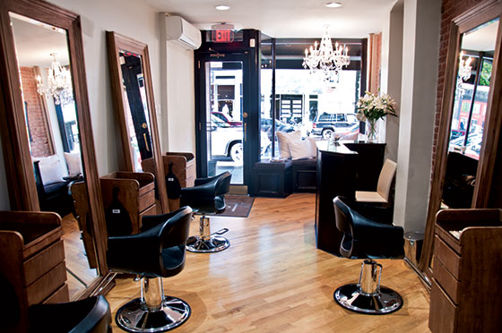 A look back on the brooklyn nets 2013 14 season ourbksocial for Hair salon perfect first essential